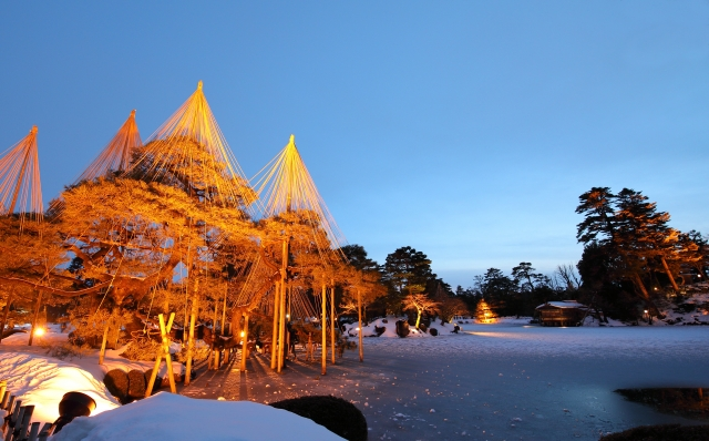 兼六園雪吊りライトアップの写真