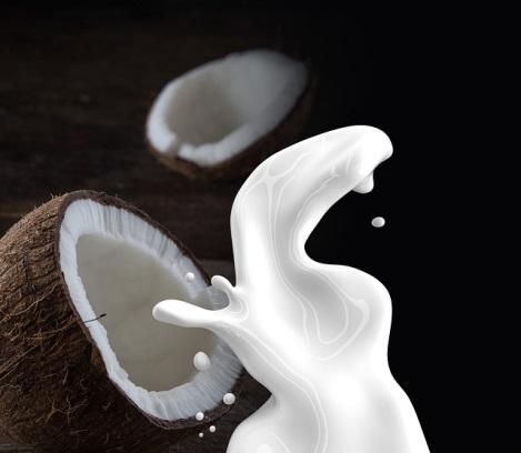 ココナッツとココナッツミルクの写真