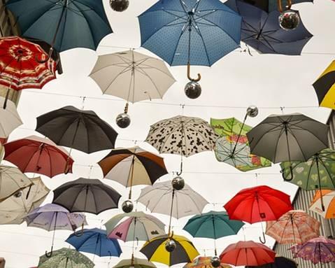 いろんな傘の写真