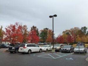駐車場と車の写真