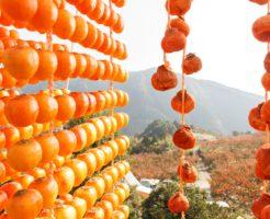 柿を干している写真