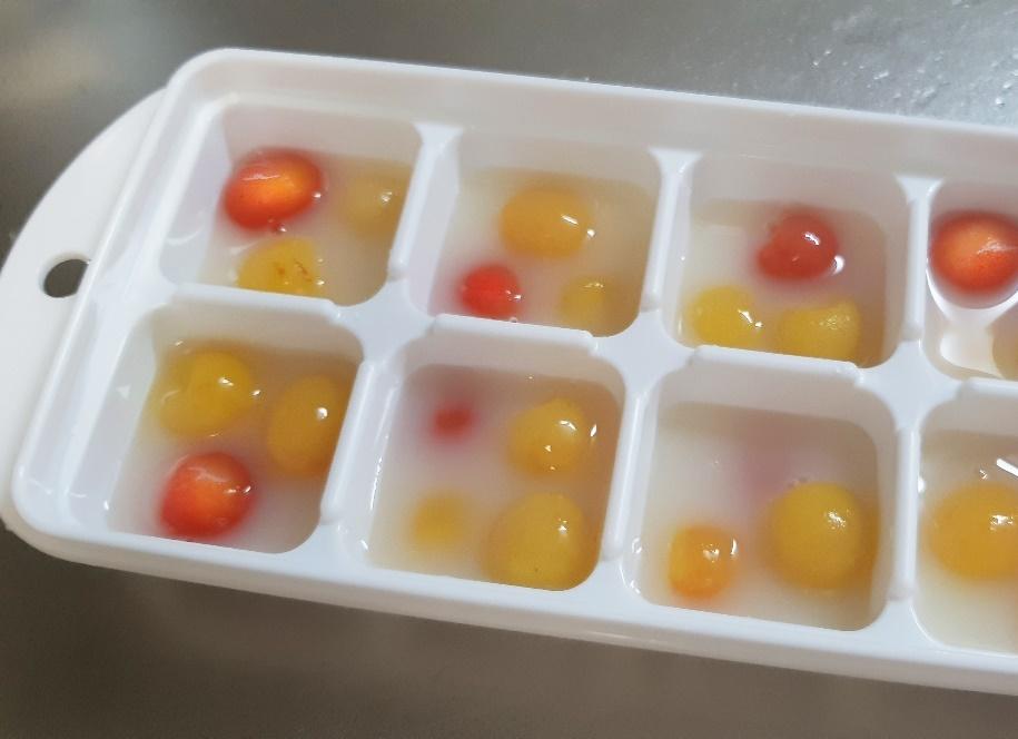 製氷皿に入ったさくらんぼ